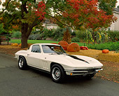 VET 03 RK0314 04