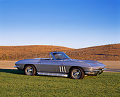 VET 03 RK0328 02