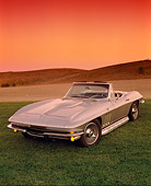 VET 03 RK0329 01