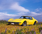VET 03 RK0349 03