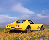 VET 03 RK0356 01