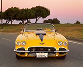 VET 03 RK0379 01