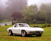 VET 03 RK0456 02