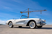 VET 03 RK0482 01
