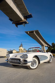 VET 03 RK0487 01
