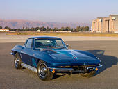 VET 03 RK0493 01