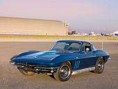 VET 03 RK0494 01