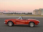 VET 03 RK0498 01