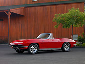 VET 03 RK0500 01