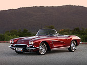 VET 03 RK0506 01