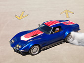VET 03 RK0512 01