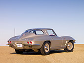 VET 03 RK0515 01