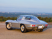 VET 03 RK0518 01