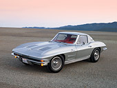 VET 03 RK0521 01
