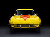 VET 03 RK0534 01