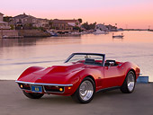 VET 03 RK0539 01