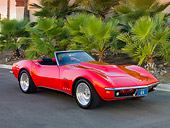 VET 03 RK0540 01