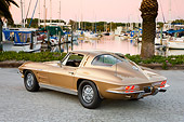 VET 03 RK0554 01