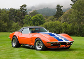 VET 03 RK0558 01