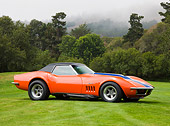 VET 03 RK0560 01