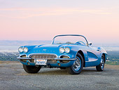 VET 03 RK0564 01