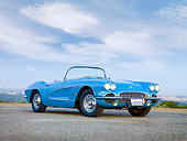 VET 03 RK0565 01