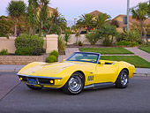 VET 03 RK0572 01