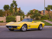 VET 03 RK0573 01