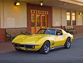 VET 03 RK0577 01