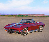 VET 03 RK0586 01