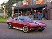 VET 03 RK0587 01