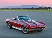 VET 03 RK0589 01