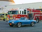 VET 03 RK0594 01