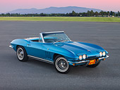 VET 03 RK0595 01