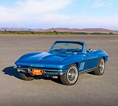 VET 03 RK0597 01