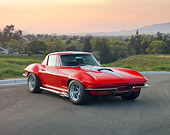 VET 03 RK0633 01