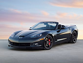 VET 04 RK0056 01