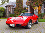 VET 05 RK0215 01