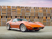 VET 05 RK0216 01