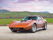 VET 05 RK0224 01