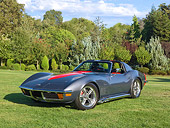 VET 05 RK0234 01