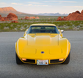 VET 05 RK0239 01