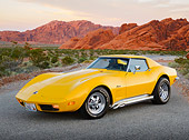 VET 05 RK0241 01