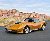 VET 05 RK0251 01