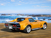 VET 05 RK0253 01
