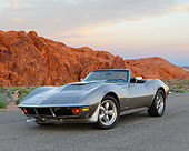 VET 05 RK0254 01