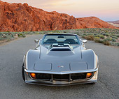VET 05 RK0257 01