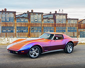 VET 05 RK0259 01