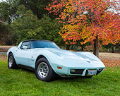 VET 05 RK0261 01
