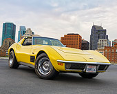 VET 05 RK0262 01